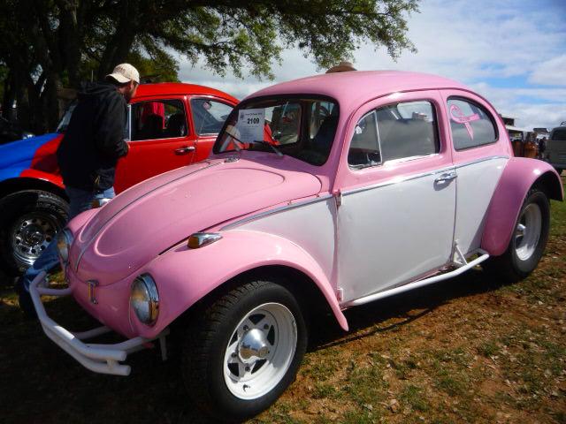 Pinky 2109 Texas Vw Classic