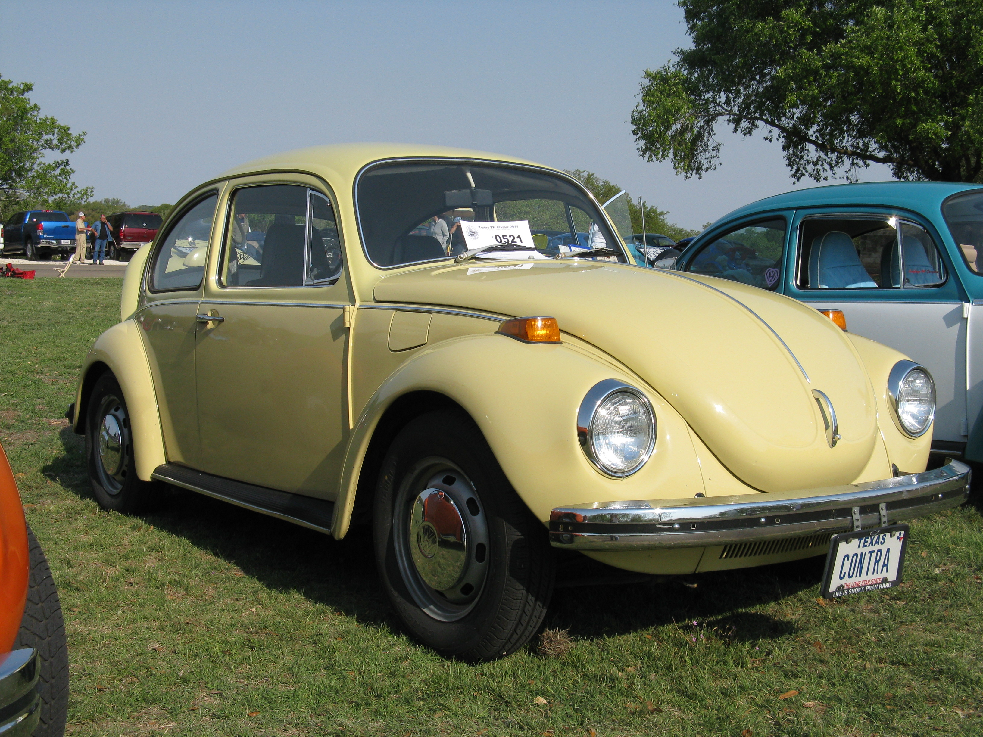 Bumblebee 0521 Texas Vw Classic