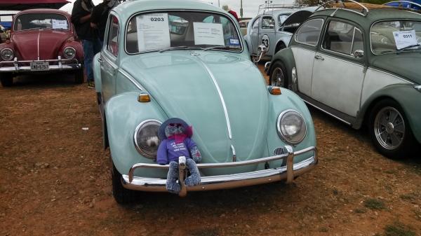 Windshield Repair San Antonio >> #0203 - Texas VW Classic