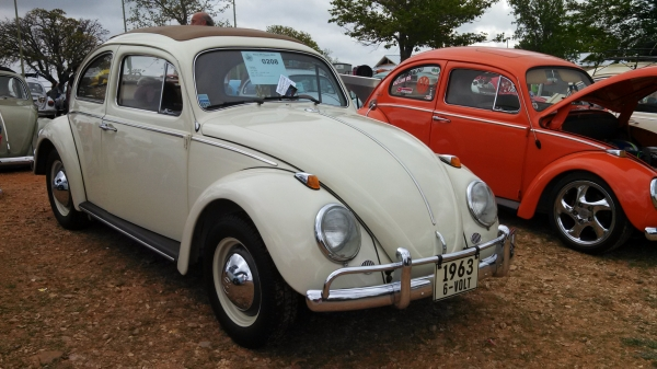 Flashback (#0208) - 1963 Beige Beetle