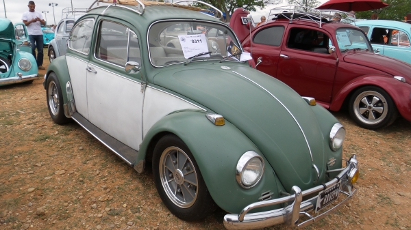 #0311 - 1967 Moss Green and White Beetle