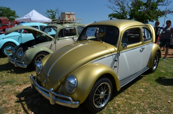 Princesa  (#0401) - 1961 Gold and White Beetle