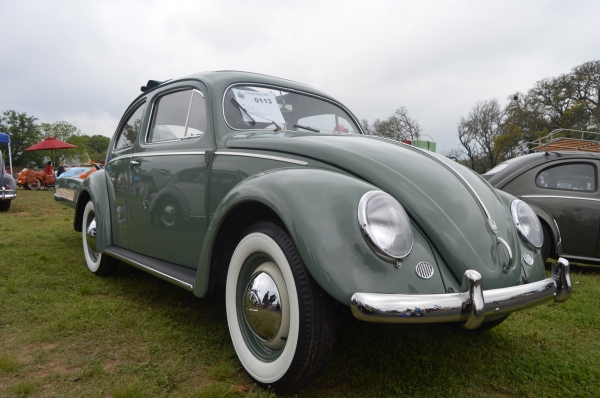 Jessie (#0113) - 1956 Agave green Beetle - Split/Oval