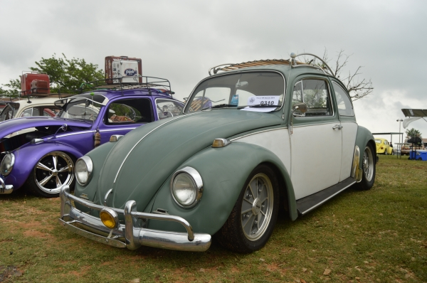 Exzonie (#0310) - 1967 Green & white Beetle